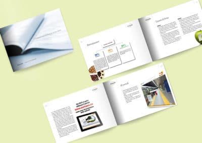 Ideazione grafica della brochure per Eurispes
