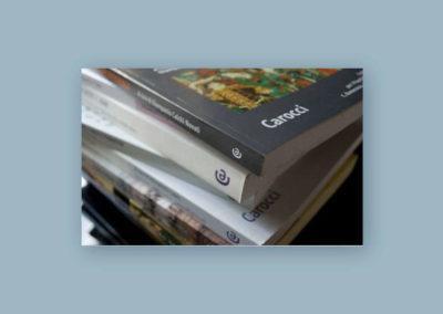 Impaginazione e correzione di bozze di circa 1.000 volumi per Carocci editore